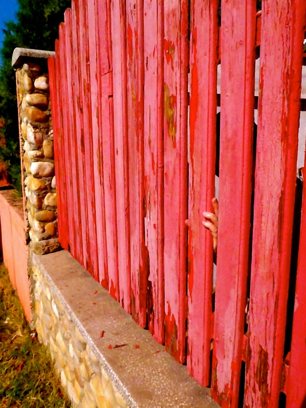 red fence